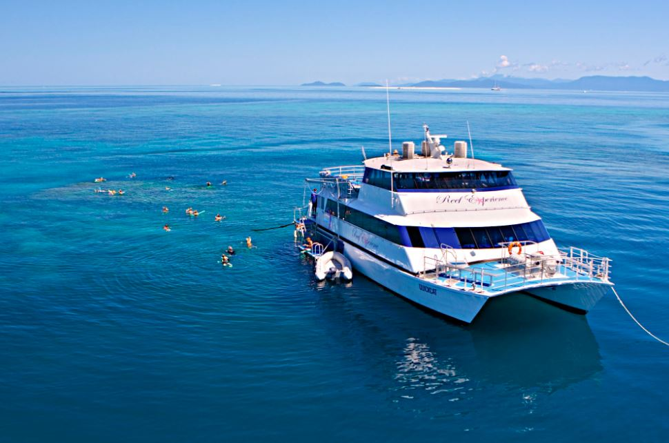 Reef Experience day tour on the Great Barrier Reef