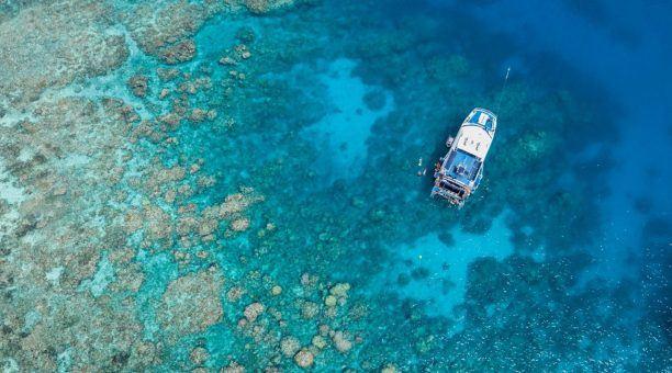 Hastings Reef