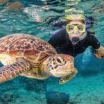 Reef, Rafting and Skydive