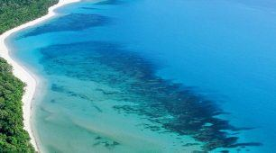 Great Barrier Reef and Luxury Daintree Rainforest
